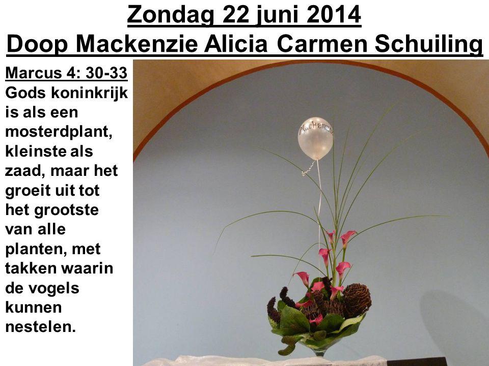 Zondag 22 juni 2014 Doop Mackenzie Alicia Carmen Schuiling