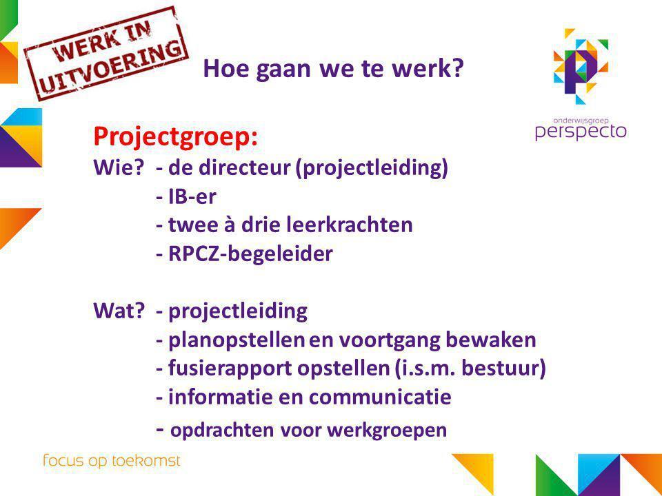 Projectgroep: Hoe gaan we te werk - opdrachten voor werkgroepen