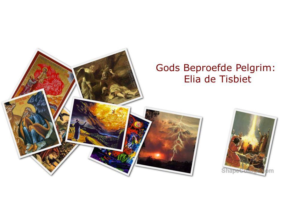 Gods Beproefde Pelgrim: