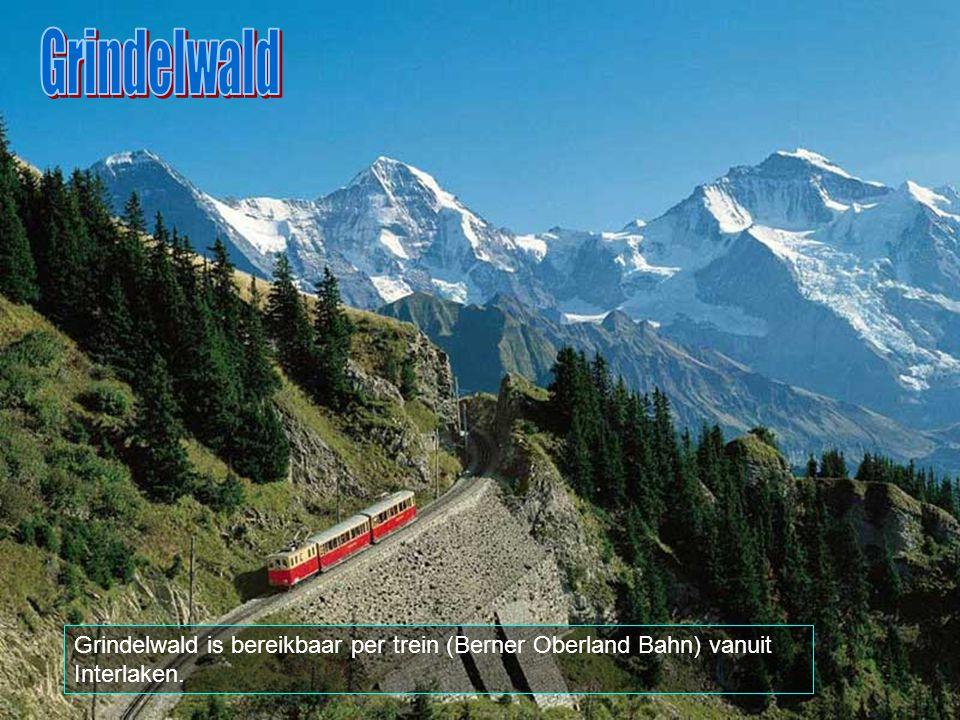 Grindelwald Grindelwald is bereikbaar per trein (Berner Oberland Bahn) vanuit Interlaken.