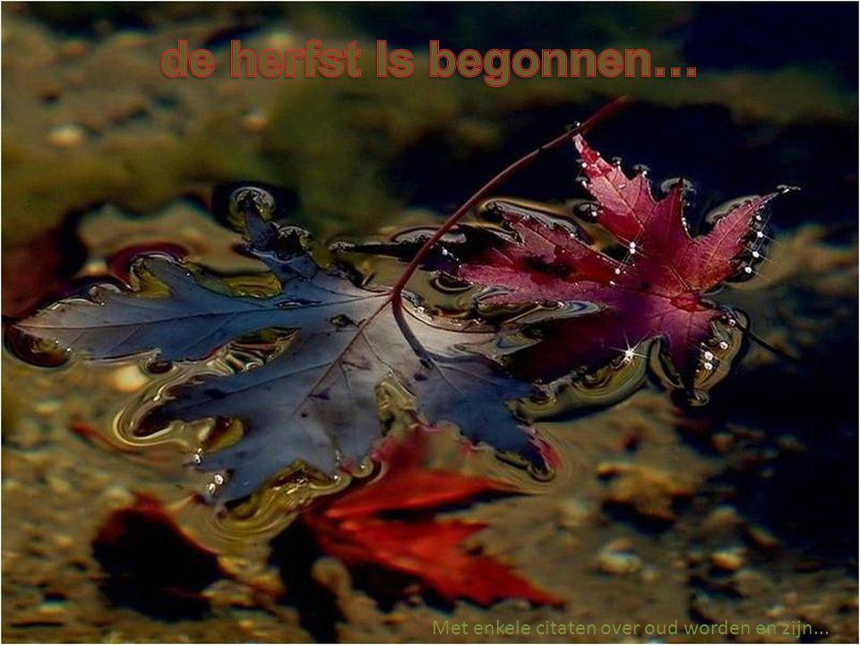 de herfst Is begonnen… Met enkele citaten over oud worden en zijn...