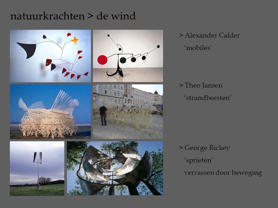 natuurkrachten > de wind