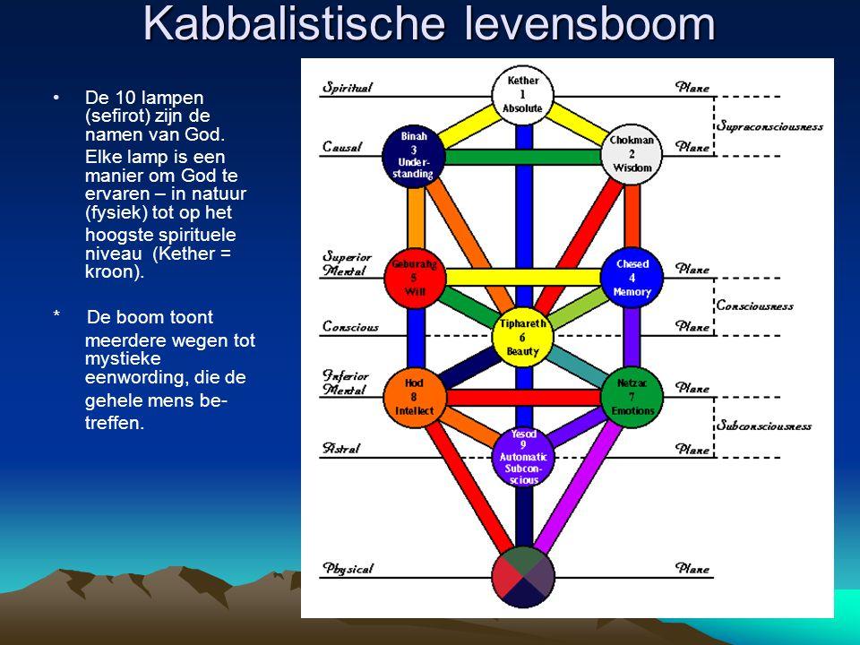 Kabbalistische levensboom
