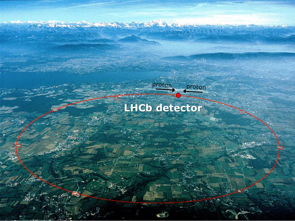proton proton LHCb detector