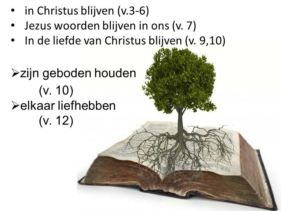 in Christus blijven (v.3-6)