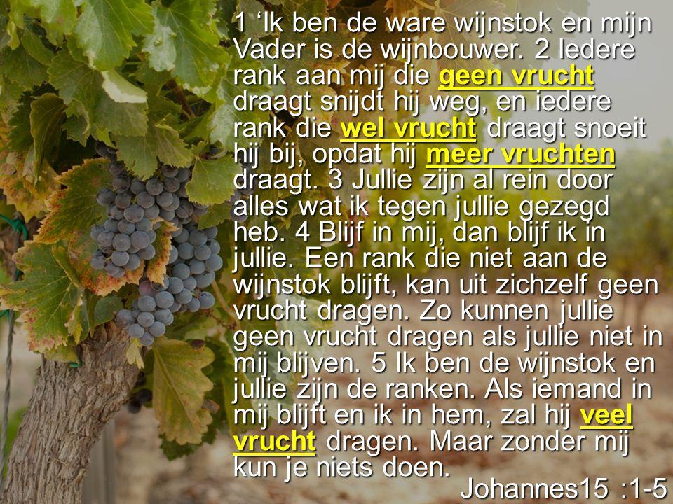 1 'Ik ben de ware wijnstok en mijn Vader is de wijnbouwer