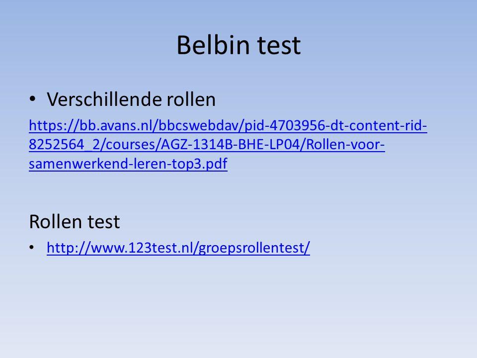Belbin test Verschillende rollen Rollen test