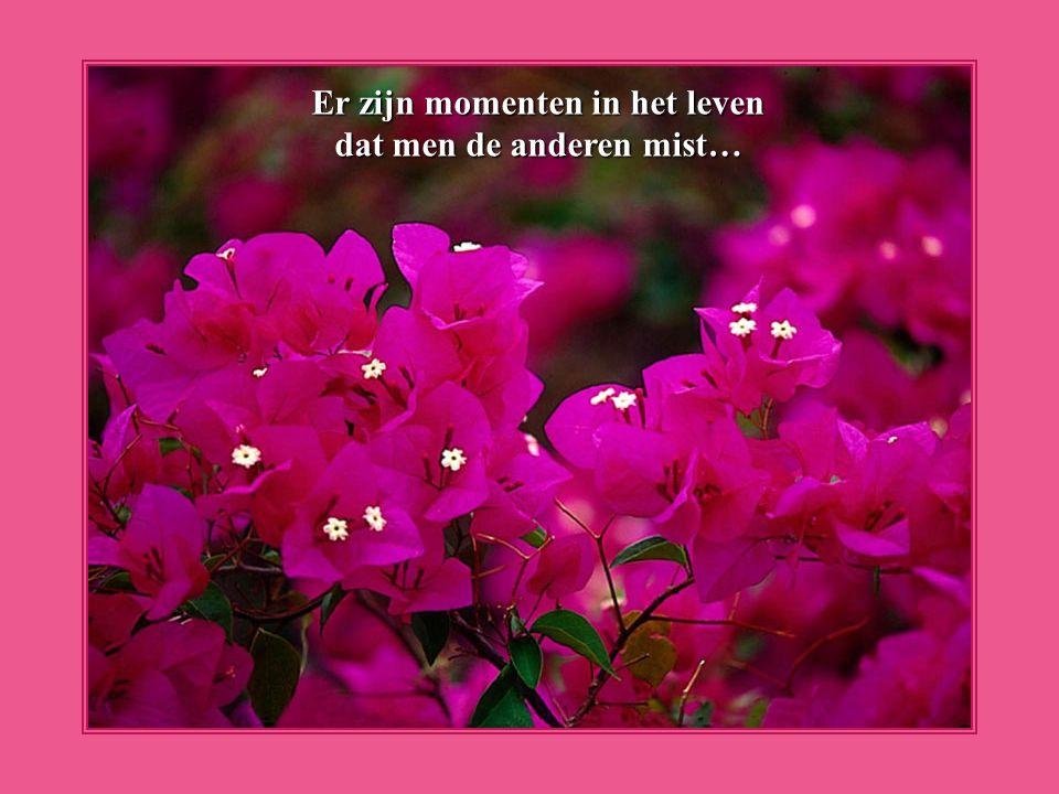 Er zijn momenten in het leven dat men de anderen mist…