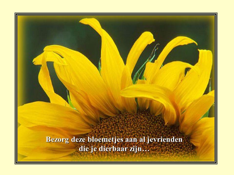 Bezorg deze bloemetjes aan al jevrienden die je dierbaar zijn…