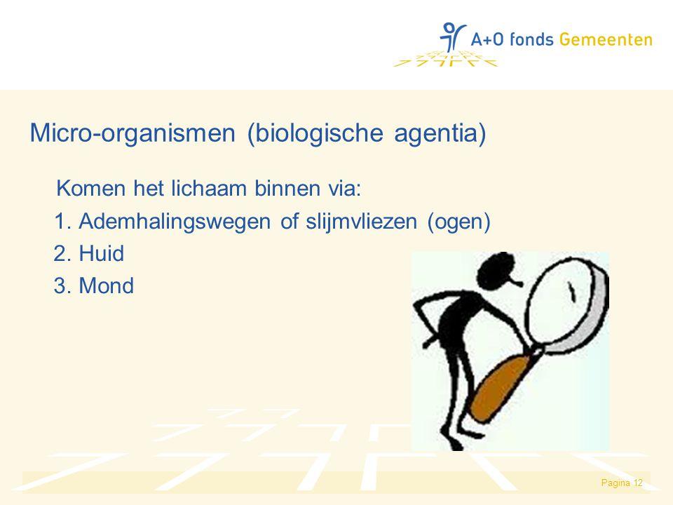 Micro-organismen (biologische agentia)
