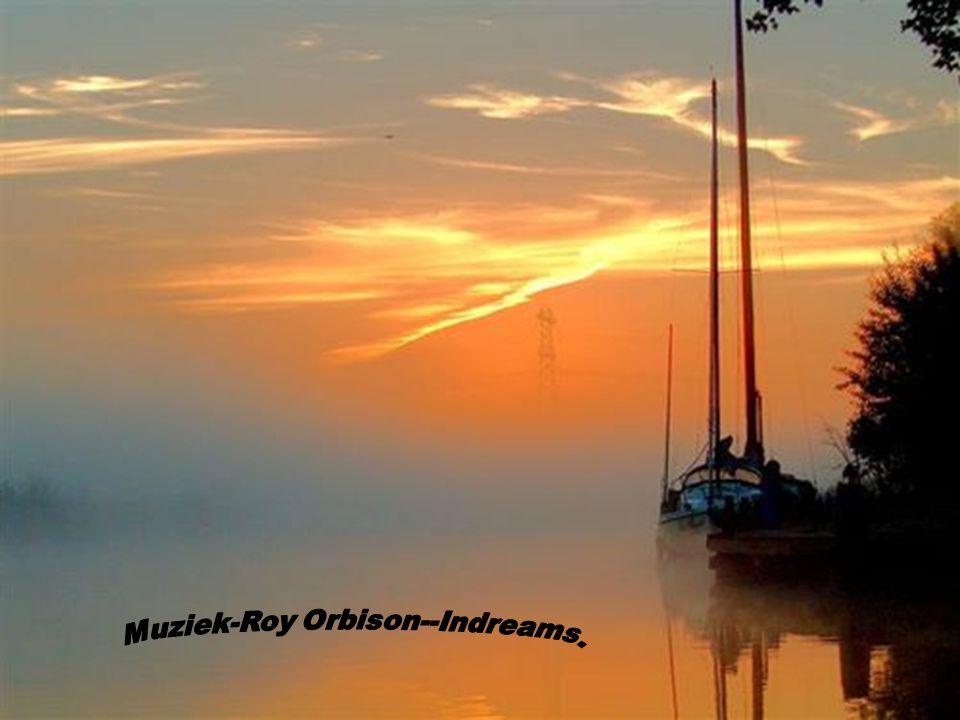 Muziek-Roy Orbison--Indreams.
