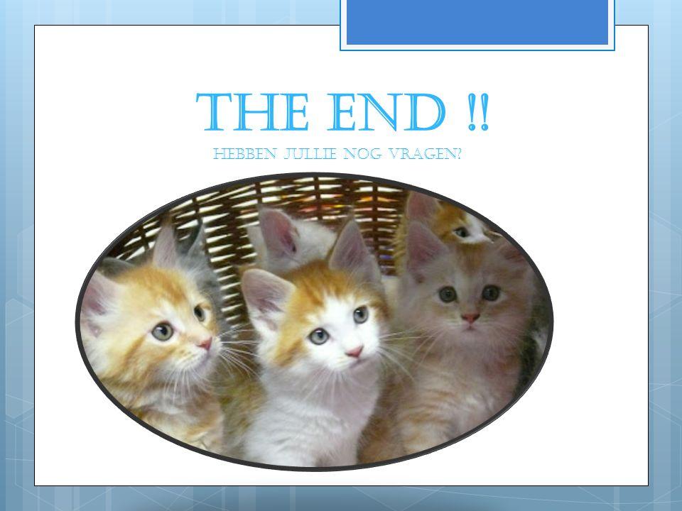 THE END !! Hebben jullie nog vragen
