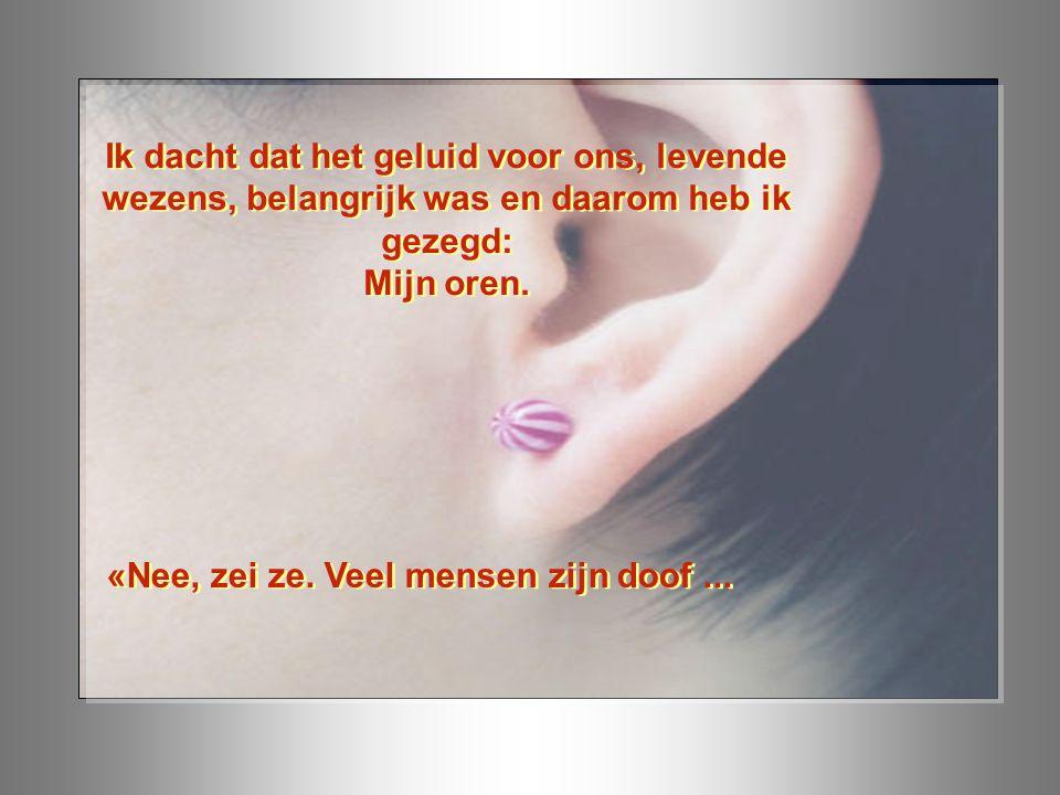 Ik dacht dat het geluid voor ons, levende wezens, belangrijk was en daarom heb ik gezegd: Mijn oren.