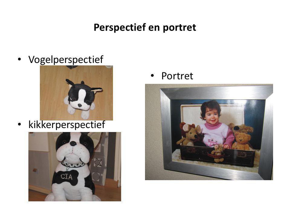 Perspectief en portret