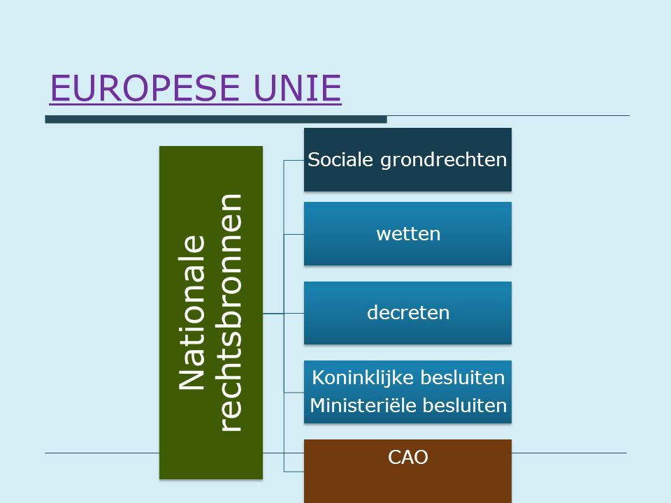 EUROPESE UNIE Nationale rechtsbronnen Sociale grondrechten wetten