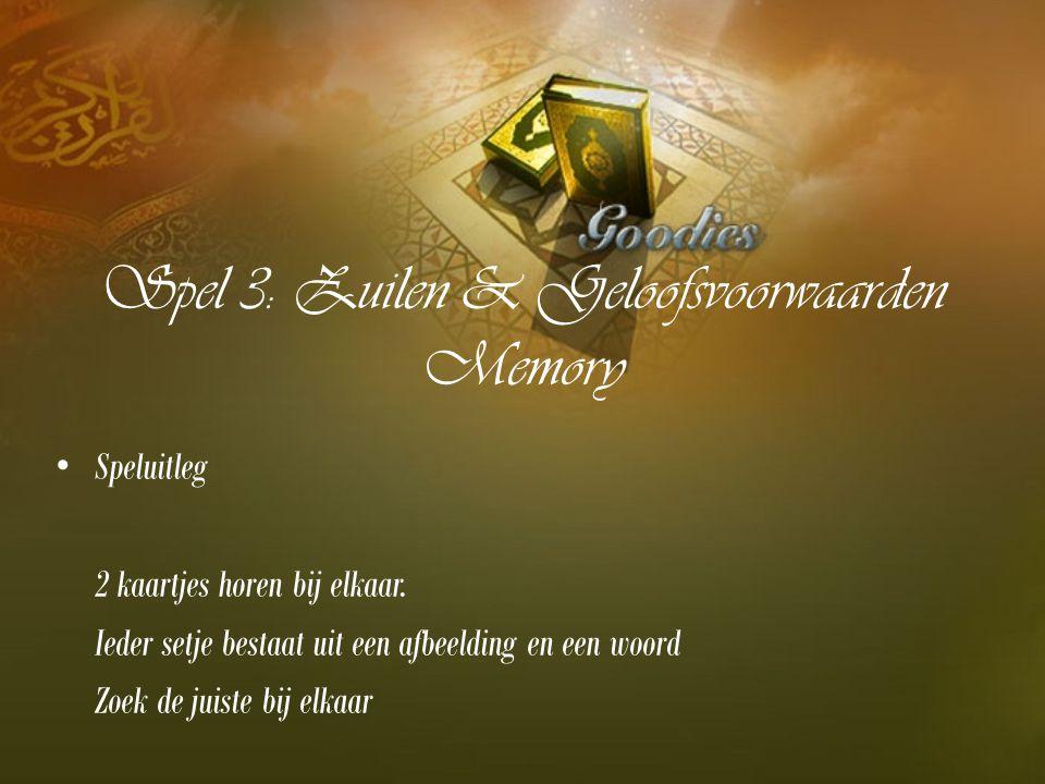 Spel 3: Zuilen & Geloofsvoorwaarden Memory