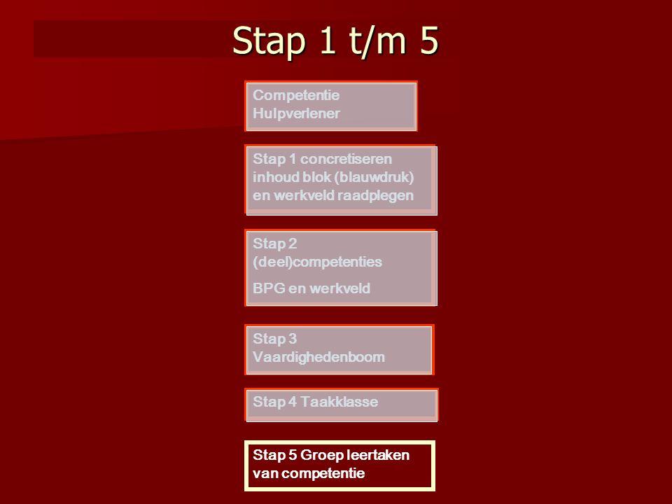 Stap 1 t/m 5 Competentie Hulpverlener