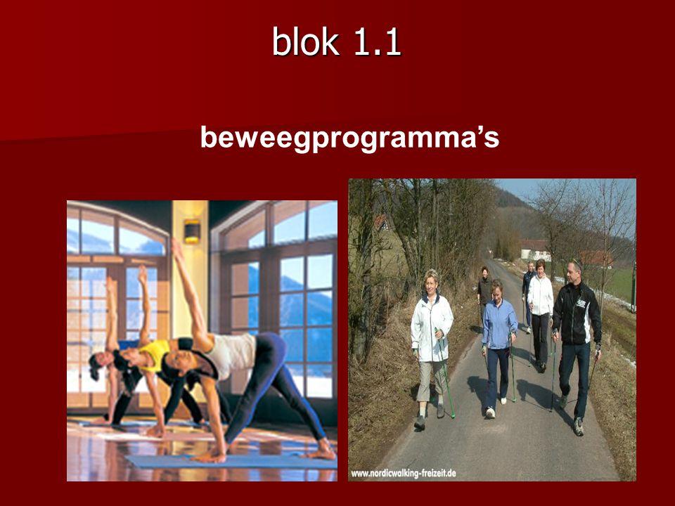 blok 1.1 beweegprogramma's