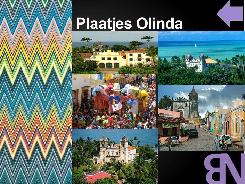 cc Plaatjes Olinda