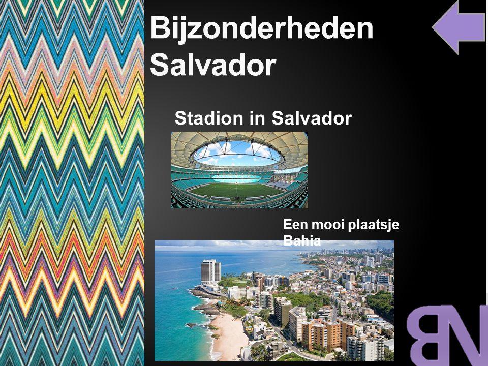 Bijzonderheden Salvador