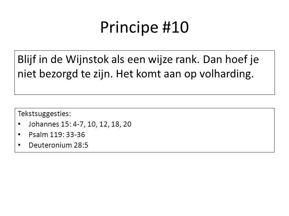Principe #10 Blijf in de Wijnstok als een wijze rank. Dan hoef je niet bezorgd te zijn. Het komt aan op volharding.