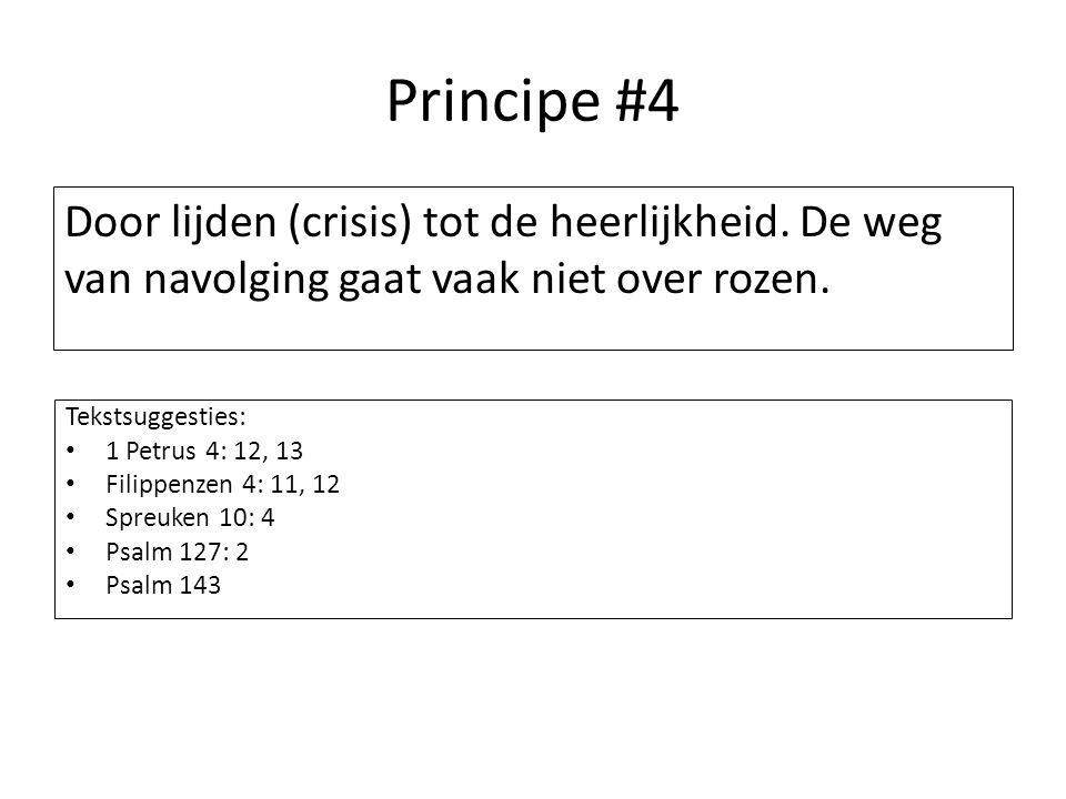 Principe #4 Door lijden (crisis) tot de heerlijkheid. De weg van navolging gaat vaak niet over rozen.