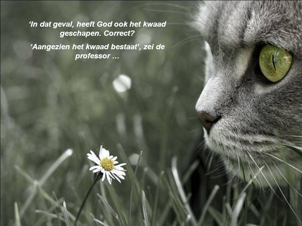 'In dat geval, heeft God ook het kwaad geschapen. Correct