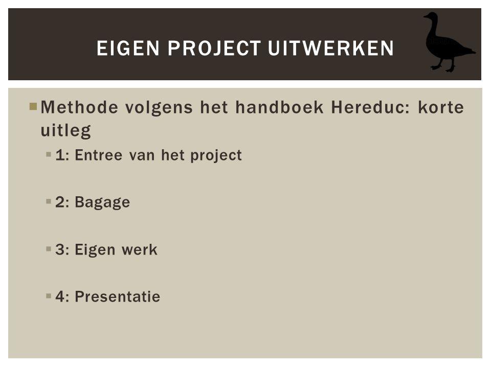 Eigen project uitwerken