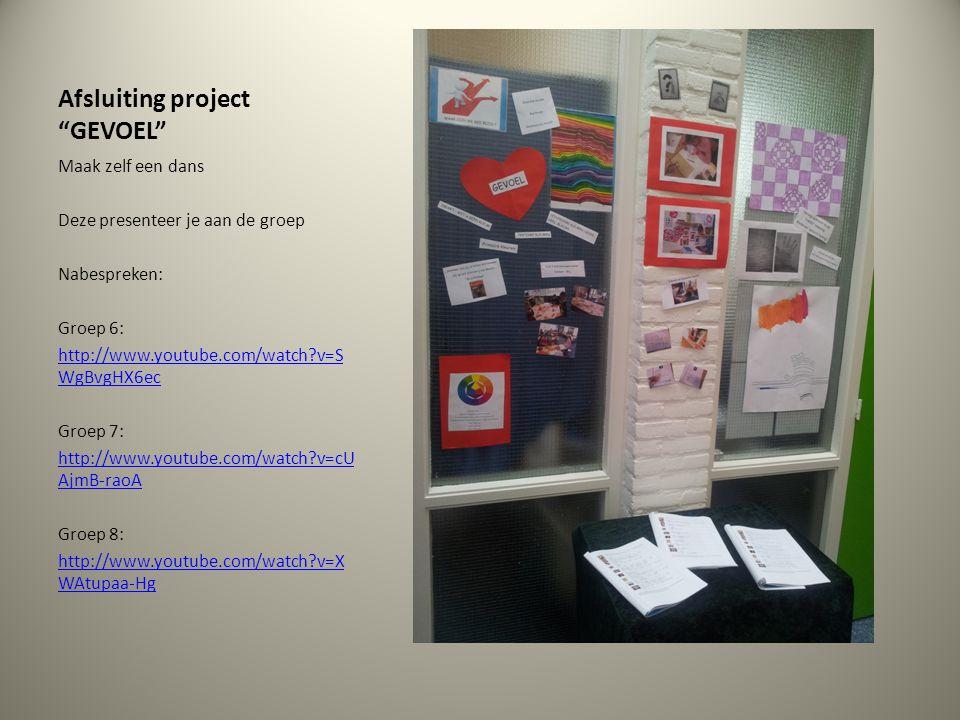 Afsluiting project GEVOEL