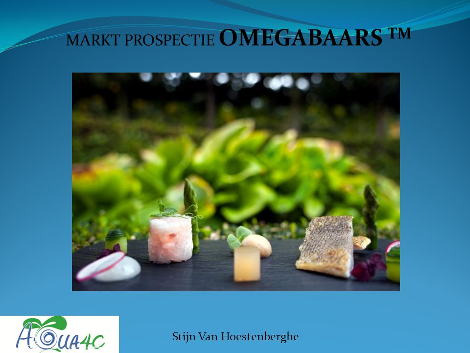 MARKT PROSPECTIE OMEGABAARS TM