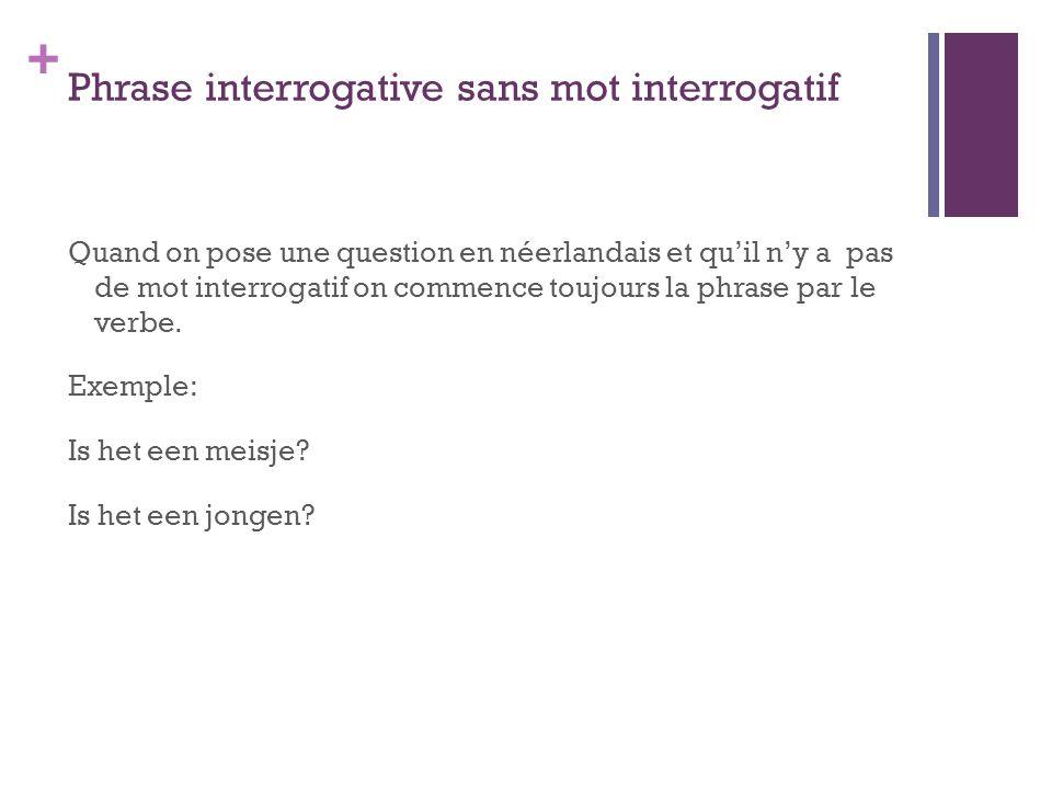 Phrase interrogative sans mot interrogatif