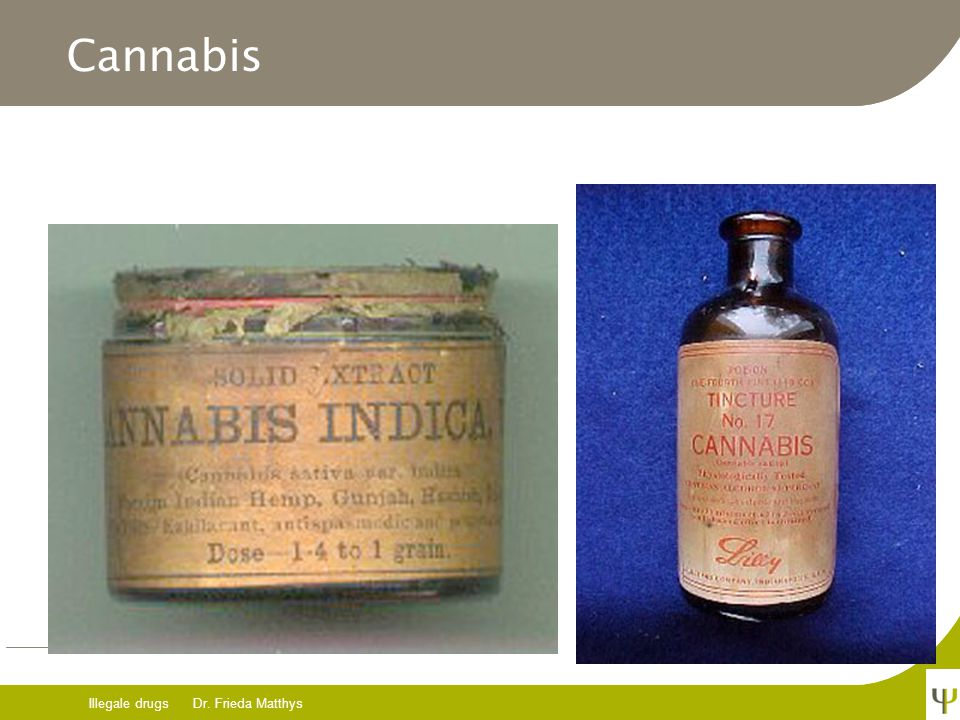 Cannabis Illegale drugs Dr. Frieda Matthys