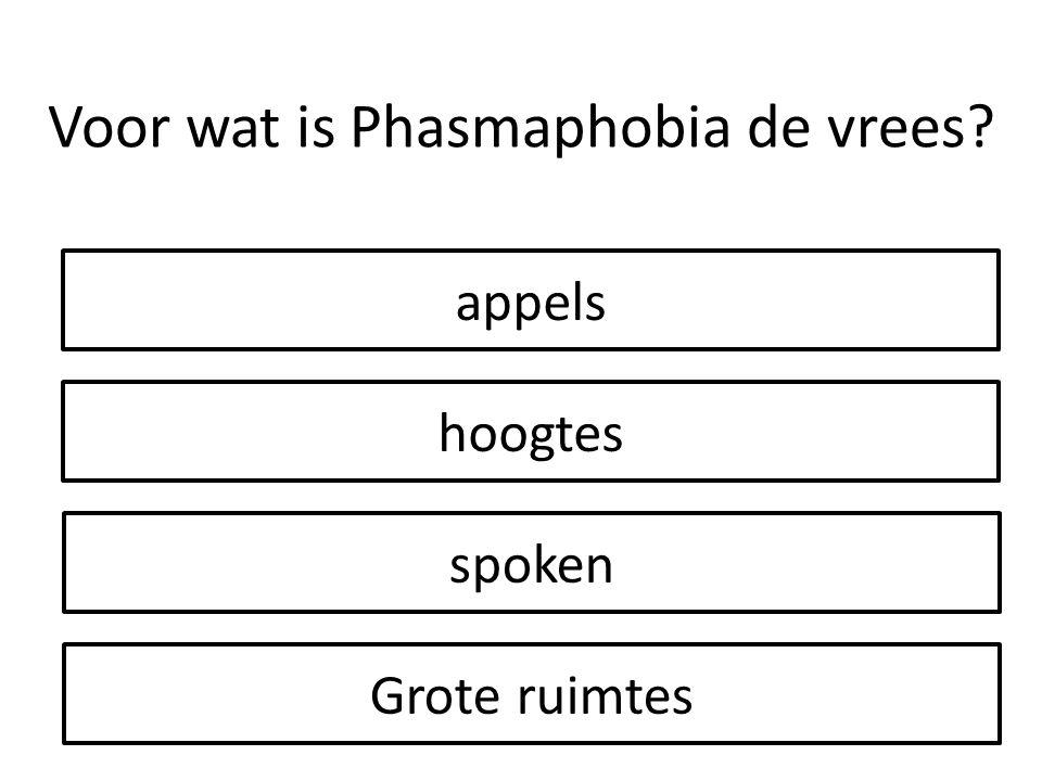 Voor wat is Phasmaphobia de vrees