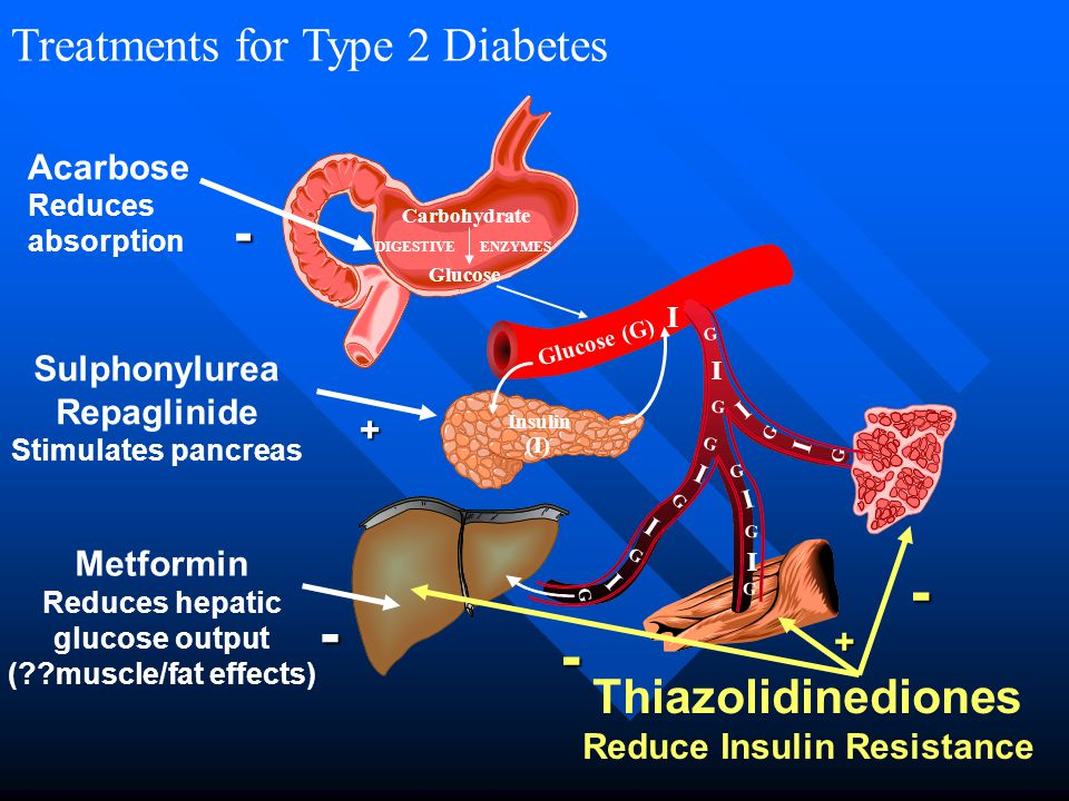 Reduces hepatic glucose output Reduce Insulin Resistance