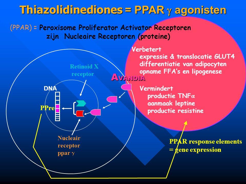 Thiazolidinediones = PPAR  agonisten