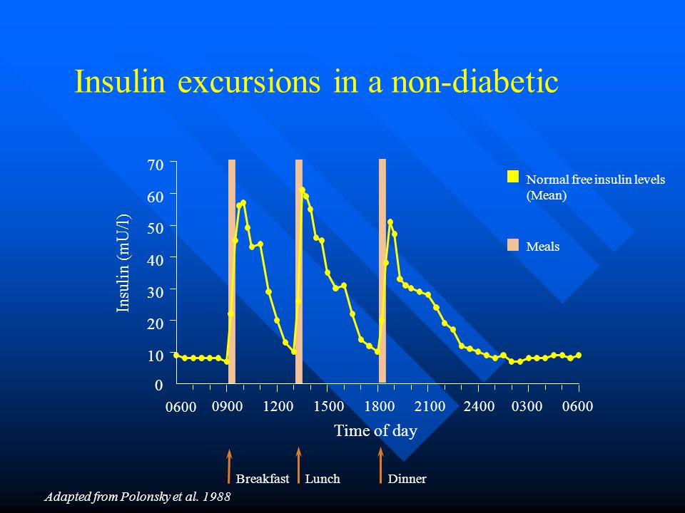 Insulin excursions in a non-diabetic