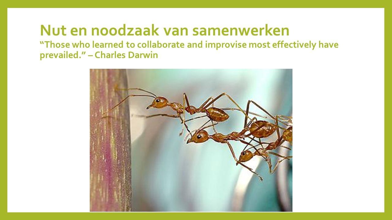 Nut en noodzaak van samenwerken Those who learned to collaborate and improvise most effectively have prevailed. – Charles Darwin