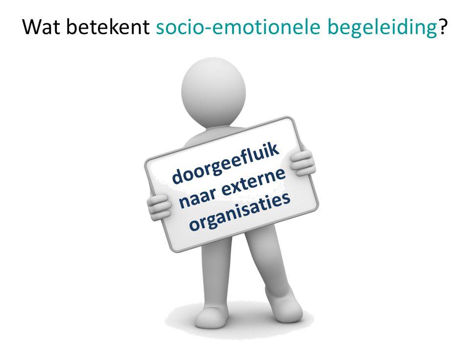 Wat betekent socio-emotionele begeleiding