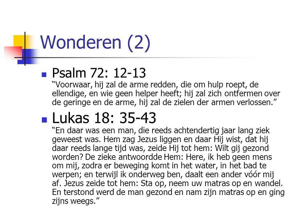 Wonderen (2)