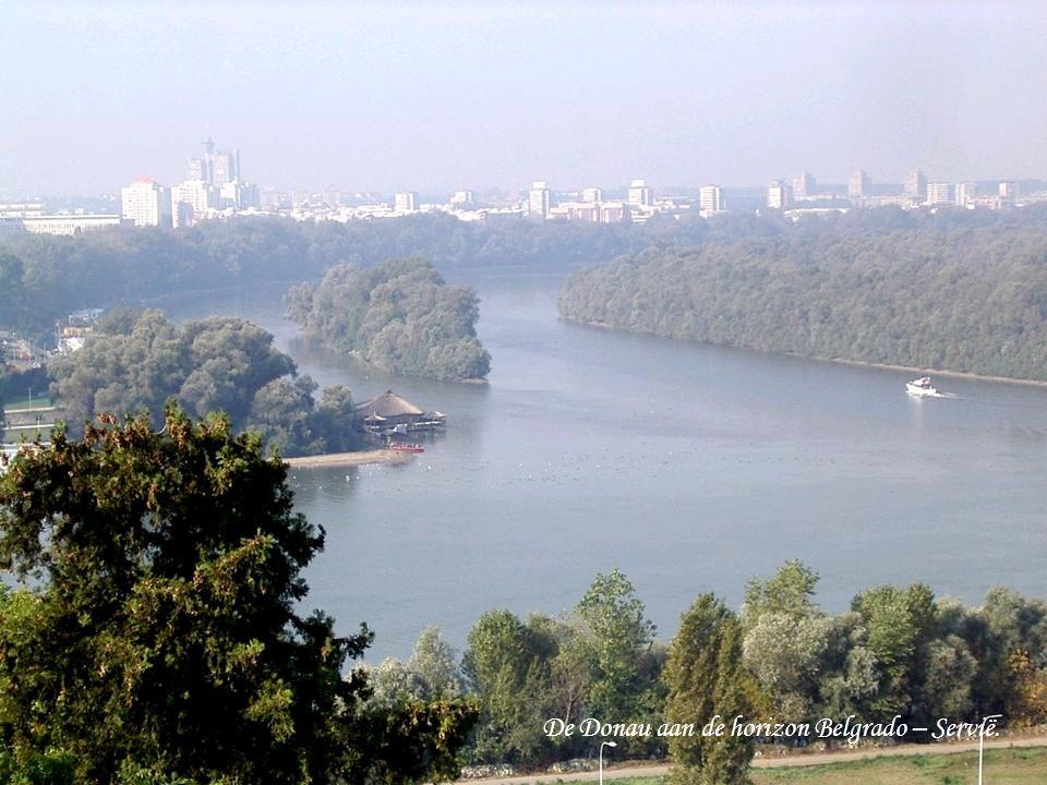 De Donau aan de horizon Belgrado – Servië.