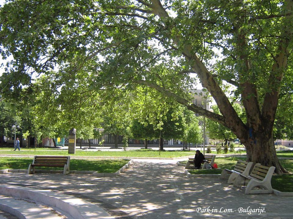 Park in Lom.- Bulgarijë.
