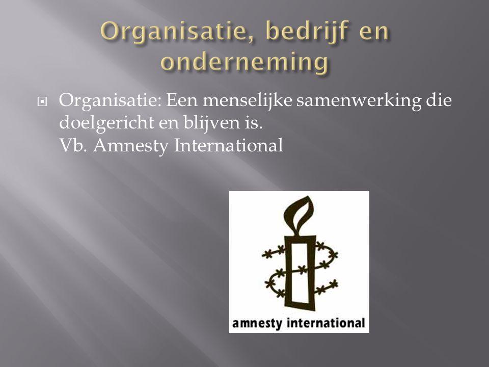 Organisatie, bedrijf en onderneming
