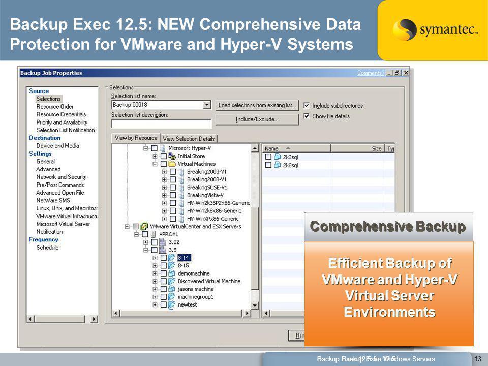 Efficient Backup of VMware and Hyper-V Virtual Server Environments