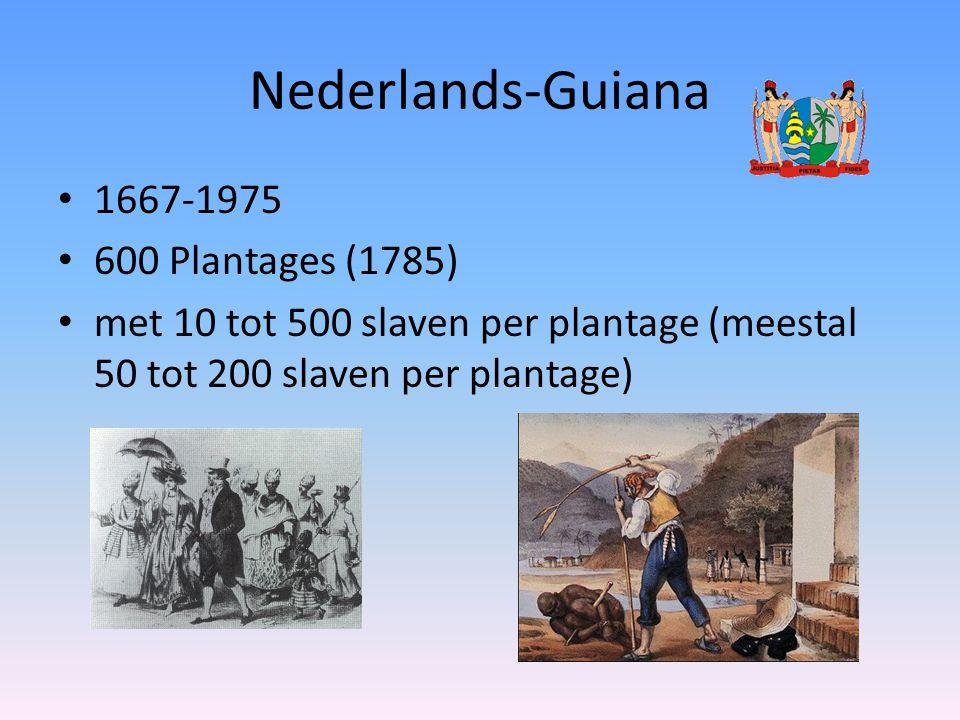 Nederlands-Guiana 1667-1975 600 Plantages (1785)