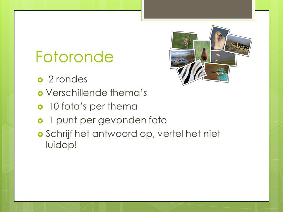 Fotoronde 2 rondes Verschillende thema's 10 foto's per thema