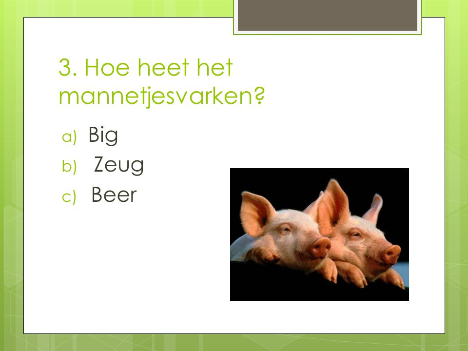 3. Hoe heet het mannetjesvarken