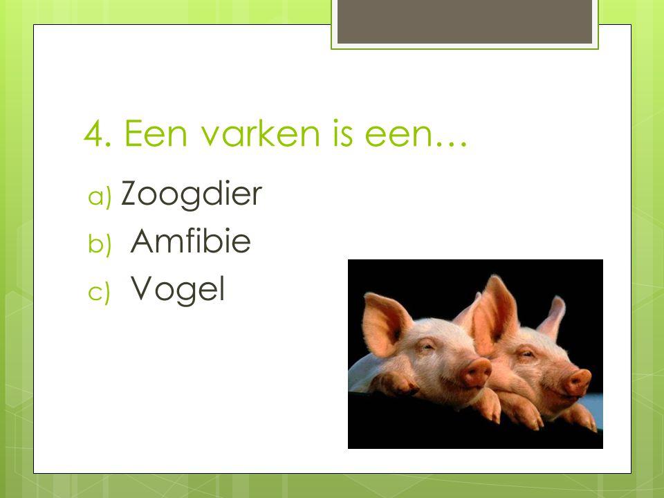 4. Een varken is een… Zoogdier Amfibie Vogel