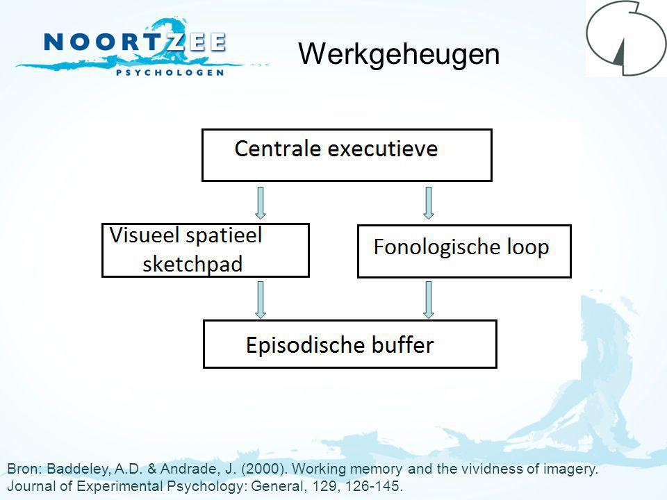 Werkgeheugen Visuele BLS: visueel +spatieel (VSS) Auditieve BLS: fonologische loop (FL) CFR (Gunter en Bodner, 2008): VSS.