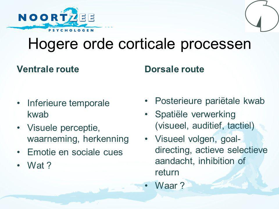 Hogere orde corticale processen