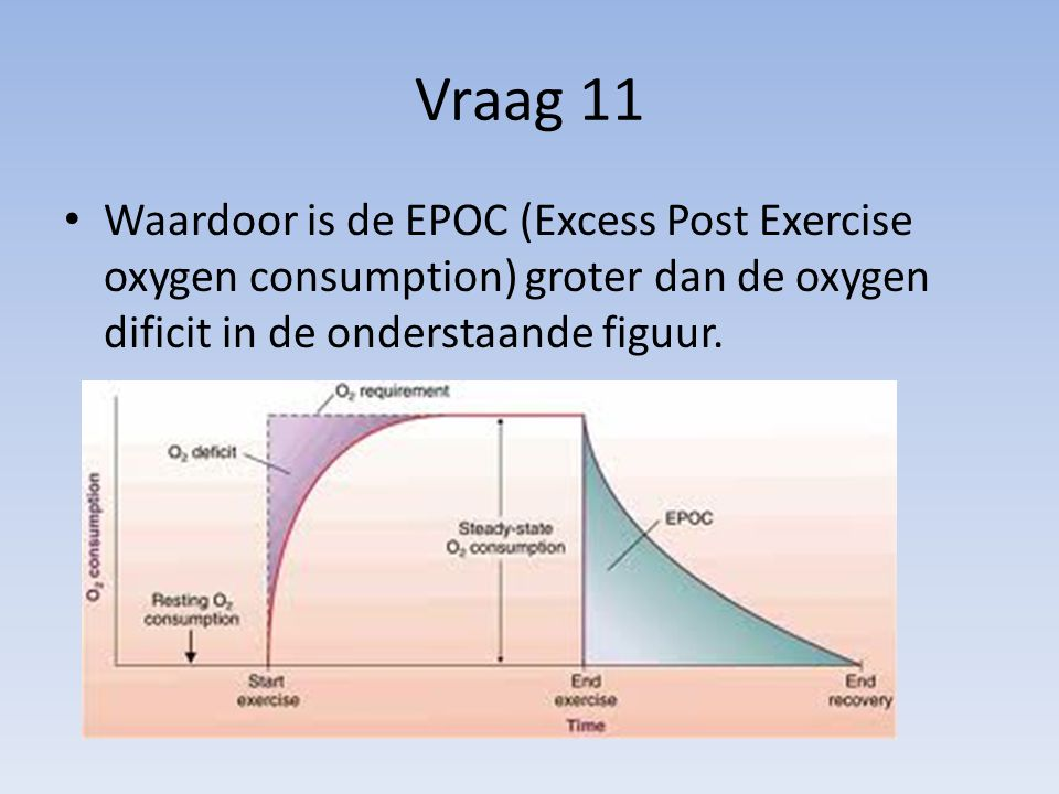 Vraag 11 Waardoor is de EPOC (Excess Post Exercise oxygen consumption) groter dan de oxygen dificit in de onderstaande figuur.